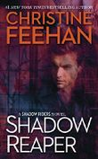 Shadow Reaper (A Shadow Riders Novel Book 2) (English Edition)