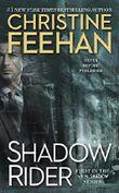 Shadow Rider (A Shadow Riders Novel Book 1) (English Edition)