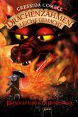 Drachenzähmen leicht gemacht - Brandgefährliche Feuerspeier