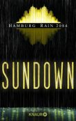 Hamburg Rain 2084. Sundown