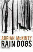 Rain Dogs: Kriminalroman: 5 (Sean-Duffy-Serie)