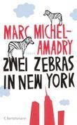 Zwei Zebras in New York