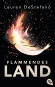 Flammendes Land (Die Chroniken der Fallenden Stadt 2)