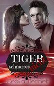 Tiger schnurren nicht: Liebesroman