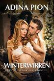 Winterwirren: Erotisch-weihnachtliche Novelle (German Edition)