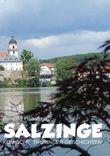 Salzinge