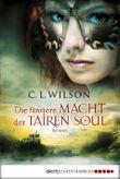 Die finstere Macht der Tairen Soul: Roman