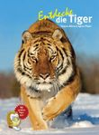 Entdecke die Tiger