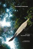 Flug der Feder