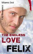 Felix: The endless love