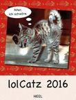 lolCatz 2016