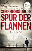 Sternenberg und die Spur der Flammen - Der erste Fall