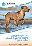 Einführung in das Kinesiologische Taping bei Hunden
