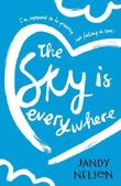 The Sky Is Everywhere by Jandy Nelson (5-Feb-2015) Paperback
