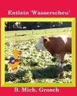 ENTLEIN 'WASSERSCHEU'