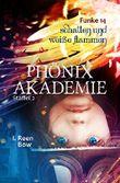 Phönixakademie - Funke 14: Schatten und weiße Flammen