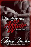 Dangerous Affair - keine Romance