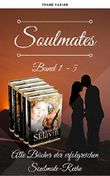 Soulmate-Serie Band 1 - 5