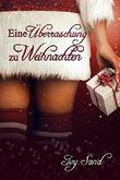 Eine Überraschung zu Weihnachten: Romantischer Kurzroman