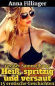 Großer Sammelband Heiß, spritzig und versaut: 15 erotische Geschichten