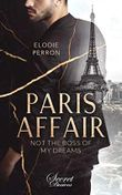 Paris Affair: Not the boss of my dreams