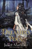 Dreamer's Pool: A Blackthorn&Grim Novel