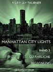 Manhattan City Lights - Gefährliche Begegnung