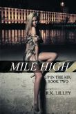 Mile High (Up In The Air) (Volume 2) by Lilley, R.K. (2013) Paperback