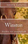 Winston III: Nichts ist unmöglich