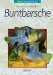 Buntbarsche