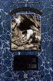 Der Graf von Monte Christo, Band 2 - Die Rache