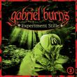 Gabriel Burns 03. Experiment Stille