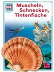 Muscheln, Schnecken, Tintenfische