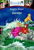 Neues vom Süderhof 5 - Sturmflut