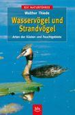 Wasservögel und Strandvögel