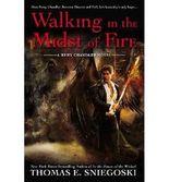 [ ARMAGEDDON (FALLEN (SIMON PAPERBACK) #05) ] BY Sniegoski, Thomas E ( AUTHOR )Aug-13-2013 ( Paperback )