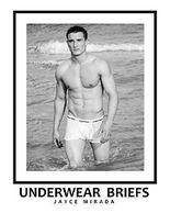 Underwear Briefs