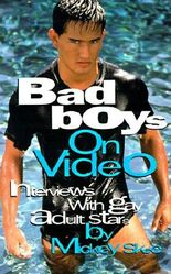 Bad Boys on Video: Interviews with Gay Adult Stars (v. 1)