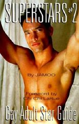 Superstars #2: Gay Adult Star Guide