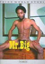 Mr. Big: Third World Studio, Vol. 1