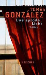 Das spröde Licht: Roman