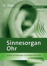 Sinnesorgan Ohr