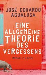 Eine allgemeine Theorie des Vergessens: Roman