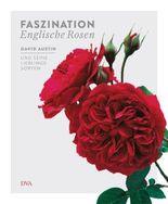 Faszination Englische Rosen