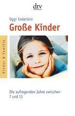 Große Kinder: Die aufregenden Jahre zwischen 7 und 13 (dtv Ratgeber)