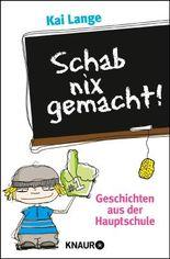 Schab nix gemacht!: Geschichten aus der Hauptschule