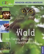 Geolino Wald