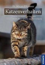 Katzenverhalten