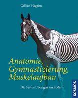 Anatomie, Gymnastizierung, Muskelaufbau
