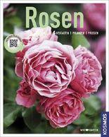 Rosen (Mein Garten)